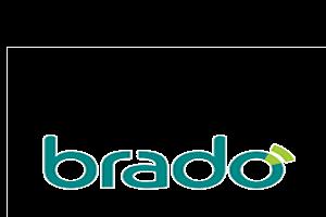 https://grupodigital.com.br/wp-content/uploads/2020/07/logo-brado.fw_-2-300x200.png